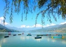 De boten van de Multicoloretoerist van Meer Pheva, boom en berg Stock Afbeelding