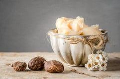 De boter en de noten van de sheaboom Stock Fotografie