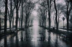 De Boulevard van Primorsky in Odessa stock fotografie