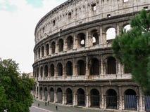 De bouw Coliseum (Colosseum) in Rome (Italië) en bomen Stock Afbeeldingen