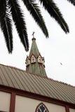 De bouw en de palm van de kerk Stock Foto's