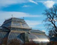 De bouw van botanisch Gestemd de tuin openbaar bezit van Heilige Petersburg royalty-vrije stock foto's