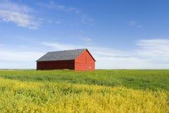 De Bouw van de prairie Stock Foto's