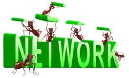 De bouwaansluting van het netwerk   royalty-vrije illustratie
