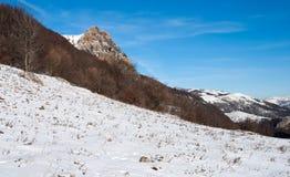 De bovenkant van de berg over hout Royalty-vrije Stock Fotografie