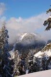 De bovenkant van de berg in winrter Royalty-vrije Stock Afbeelding