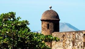 De bovenkanten van een fort en een grote boom stock fotografie