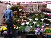 De box van bloemen in Markt Stock Fotografie