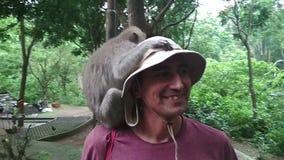 De boze aap rond toeristen springt bij de mens probeert om dingenaanvallen, uitgestelde hoed van de toerist en grappige looppas t stock footage