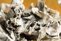 De brända-ner papperssidorna Arkivbild