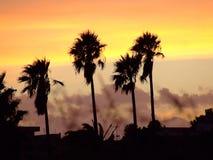 De brännheta solnedgångarna av himlarna av Afrika Arkivfoton