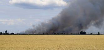 De brand is ergens voorbij het geploegde gebied Donkere rook van een brand Stock Foto