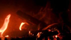 De brand in fornuis, sluit omhoog, brandhout het branden stock videobeelden