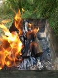 De brand in de grill voor kebabs door saxaul wordt aangestoken die royalty-vrije stock afbeelding