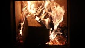De brand hulde de berk het programma opent het fornuis, langzame motie stock video