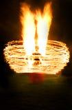 De brand toont Vector Illustratie