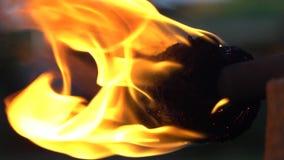 De brand toont stock footage