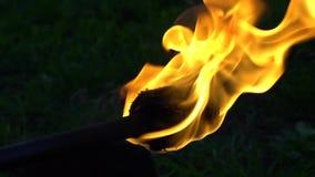 De brand toont stock video