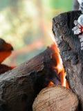De brand van Barbaque Stock Foto's