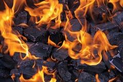 De Brand van de barbecue Stock Foto's