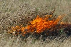 De brand van de weide Royalty-vrije Stock Afbeeldingen