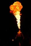 De brand van het spit Stock Afbeelding