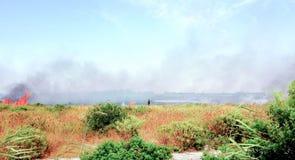 De brandbestrijder dooft een brandstichting stock foto's