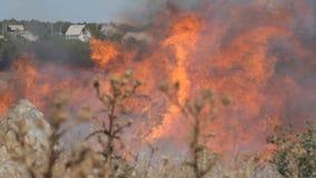 De brandbestrijder dooft een opvlammende brand de steppe stock videobeelden