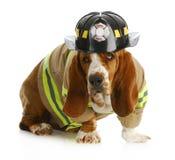 De brandbestrijder van de hond stock foto