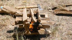 De brandbrandwonden Close-up Wandeling, reis, groen toerismeconcept Gezonde actieve levensstijl Rivier en bos in stock videobeelden