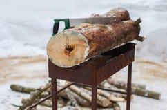 De brandhout en zaag van het besnoeiingslogboek Vernieuwbaar middel van een energie stock foto's