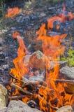 De brandwond van boomtakken in brand stock afbeeldingen