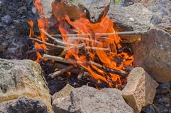 De brandwond van boomtakken in brand royalty-vrije stock fotografie