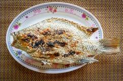De Brandwond van grillvissen royalty-vrije stock foto
