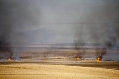 De Brandwond van het prairiestoppelveld royalty-vrije stock fotografie