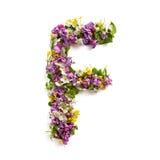 """De brief """"FÂ"""" van diverse natuurlijke kleine bloemen wordt gemaakt die royalty-vrije stock afbeelding"""