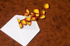 De brief van de liefde - Liebesbrief stock foto