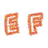 De brieven E, F dat van de herfst wordt gemaakt gaat weg Stock Afbeeldingen
