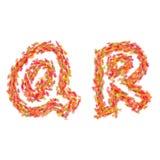 De brieven Q, R dat van de herfst wordt gemaakt gaat weg Stock Foto