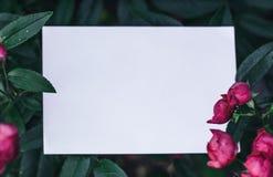 De brievenachtergrond van de liefde stock afbeeldingen