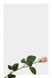 De brievendocument van de liefde met rode roze achtergrond stock illustratie