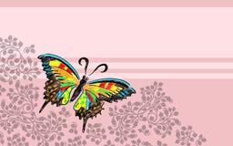 De brievenprentbriefkaar van de vlinder Stock Foto's