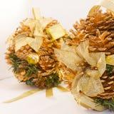 De briljante winter pinecones stock afbeeldingen