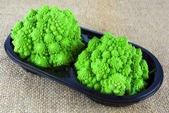 De broccoli van babyromanesco Stock Fotografie