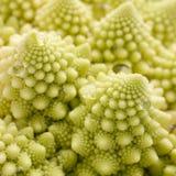 De broccoli van Romanesco Royalty-vrije Stock Fotografie