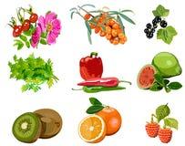 De bronnen van de installatie van vitamine C Stock Foto's