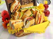 De Broodjes van de picknick Royalty-vrije Stock Foto's