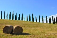 De broodjes van het hooi in Toscanië, Italië Stock Afbeeldingen