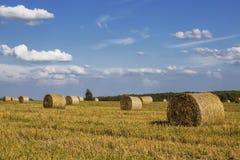 De broodjes van het stro op landbouwersgebied Stock Afbeelding