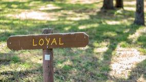 De Brown de signe champ herbeux en bois dedans avec loyal écrit là-dessus photo stock